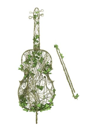 Ivy nature violin  Stock Photo
