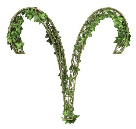Ivy nature signs of the zodiac Ram