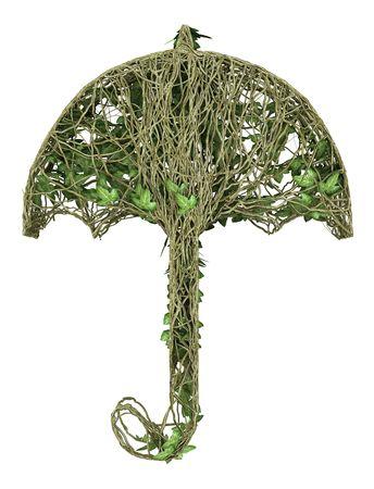 Ivy nature umbrella  Stock Photo