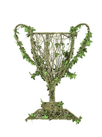ivy nature award