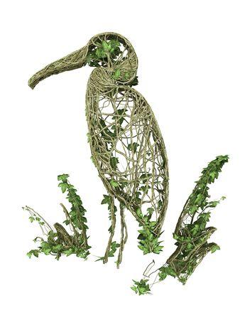 ivy nature bird