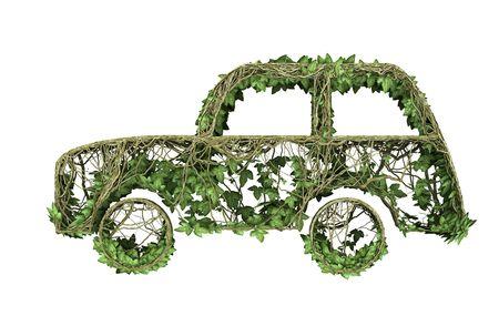 Ivy nature car