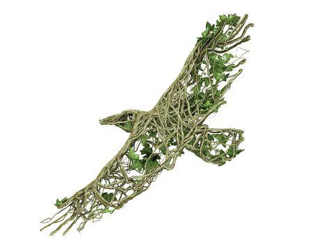 Ivy nature eagle  Stock Photo