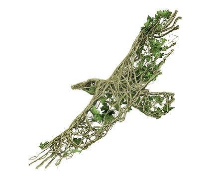 Ivy nature eagle  Stock Photo