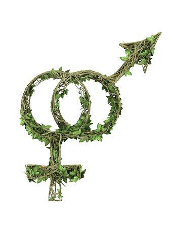 Abstract man and woman symbol green ivy