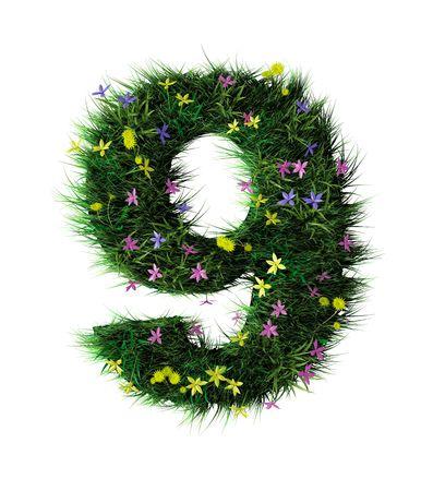 grass font: Grass and flower letter nine