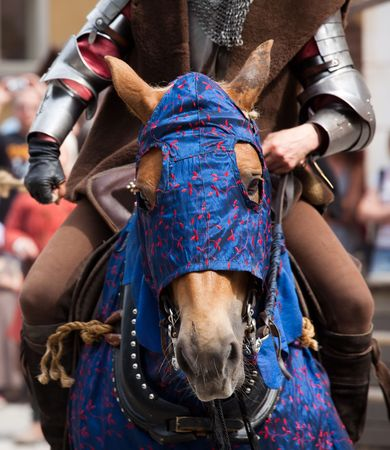 croud: A blue-clad medieval style horse and rider in armour.