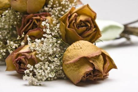 Dried pink roses with Baby Breaths flower bouquet.