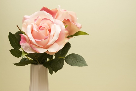 Bouquet of a pair of pink roses in a white vase against a light green background.