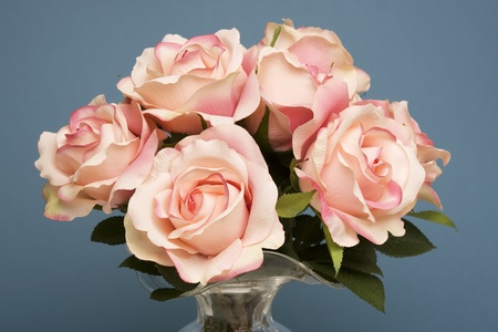 Bouquet of pink roses in a glass vase against a blue background. Stok Fotoğraf