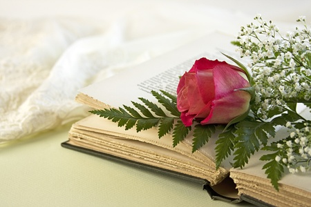 A single red rose lays on an opened vintage book with a green fern leaf and baby breath flowers with a lacy negligee in the background. photo