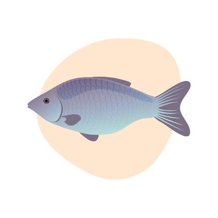 Vector illustration of cartoon fish  isolated