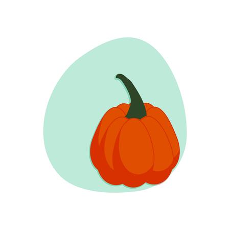 Cartoon pumpkin isolated Vector illustration. Иллюстрация
