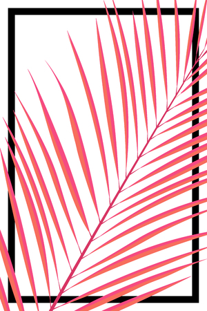 Abstract summer card. Pink tropical leave on white background Ilustracja