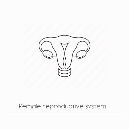 Female reproductive system icon isolated. Single thin line symbol of reproductuve system. Human body anatomy outline pictogram