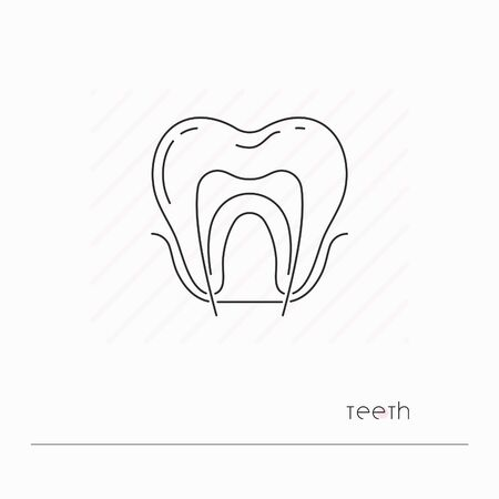 Tooth icon isolated. Single thil line symbol of tooth with nerve. Human anatomy outline pictogram Ilustracja