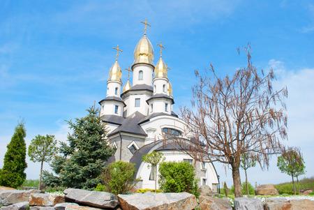 晴れた日、武器、ウクライナの村の美しい正教会 写真素材