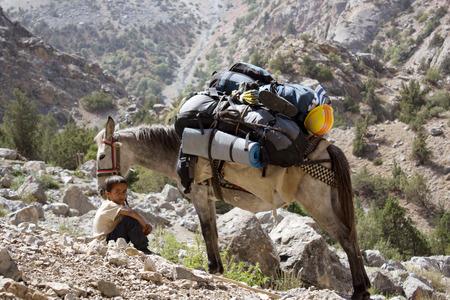 Petit garçon Afroim est un guide. Ses parents l'envoyèrent à tenir un groupe de touristes vers le col, avec un âne sacs à dos chargés. Tadjikistan, montagnes Fann, le 23 août 2014 Banque d'images - 38359616