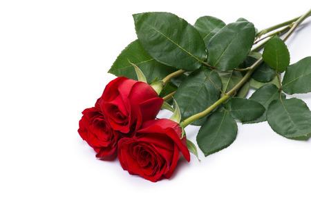 dar un regalo: rosa roja flor ramo aislado en el camino de recortes blanco incluido Foto de archivo