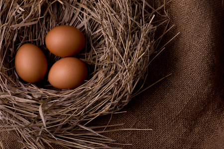 three chicken organic eggs with straw in nest on burlap background photo