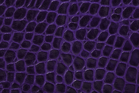 cracklier: purple color embossed leather background texture vertical