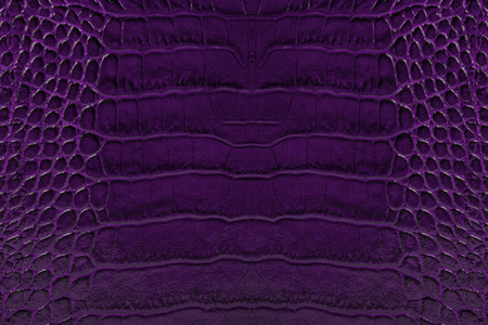 cracklier: dark purple color embossed leather background texture