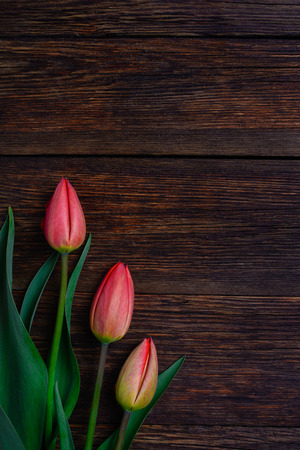 Red tulips flowers bouquet on old wooden table background. Top view with copy space.