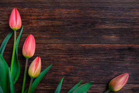 wooden table top view: Red tulips flowers bouquet on old wooden table background. Top view with copy space.