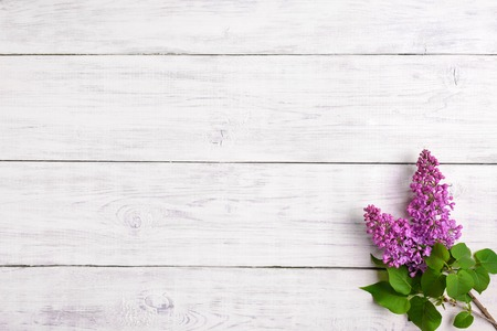 The beautiful lilac on a wooden background, copy spase Stock Photo