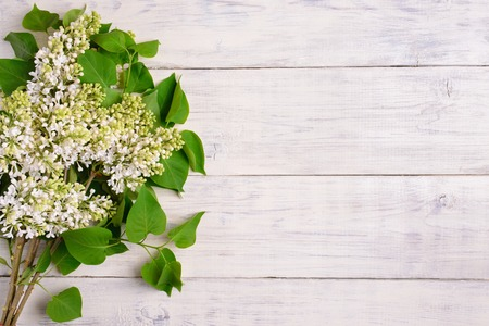 arrangement: The beautiful lilac on a wooden background, copy spase Stock Photo