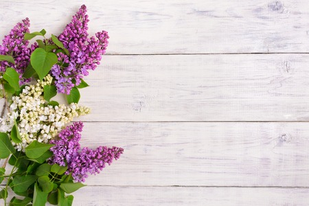 The beautiful lilac on a wooden background, copy spase Фото со стока