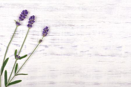 madera: flores de lavanda en la mesa de madera de fondo blanco, vista desde arriba