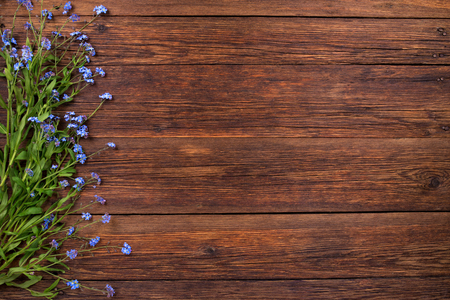 blue romance: Forget-me-not blue flowers on wooden background, copy space
