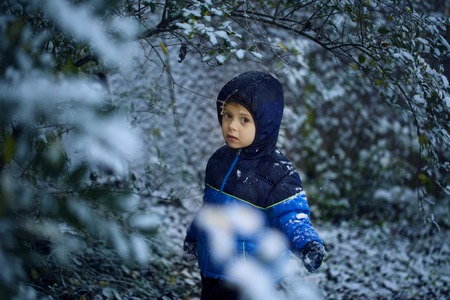 A cute little boy stands in snow in park in the winter, looking at the camera