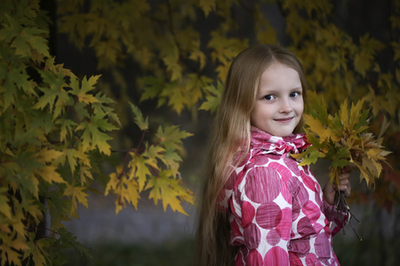 Portrait of a Happy smiling little girl looking at the camera in the autumn park. Cute four years old child enjoying nature outdoors. Banque d'images