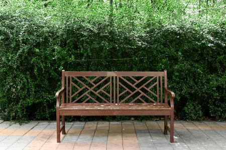 naranja arbol: silla en el parque