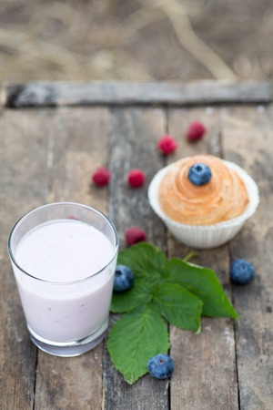 Natural yogurt with fresh berries and muffins. copy space.