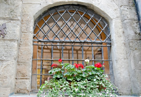 flower pot in a window with bars  photo