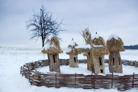 dandelion snow: Landscape with beehives  and wooden fence , wintertime