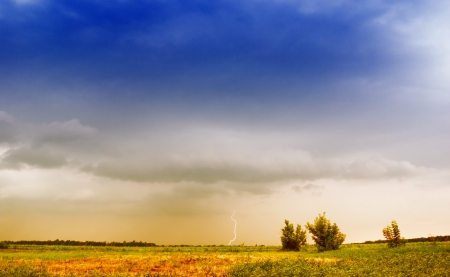 find similar images: Dark stormy clouds over a field   Save to a lightbox �        find similar images  share share �    Dark stormy clouds over a field  Stock Photo