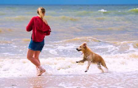 A girl with a dog is playing on the beach Standard-Bild