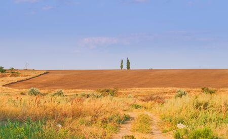 plowed field, hot summer day