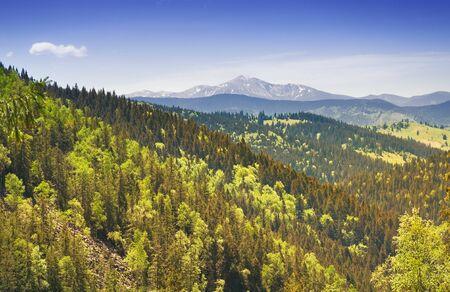 Carpathian Mountains on a sunny summer day