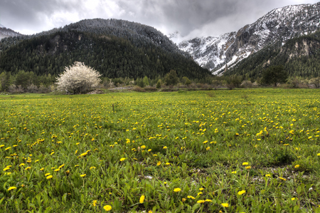 bardonecchia: Spring against winter in an italian alps Stock Photo