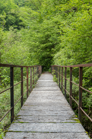 Cement and metal bridge in a forest Wildlife abandoned