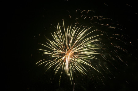 year        s: Capodanno s Eve fuochi d'artificio