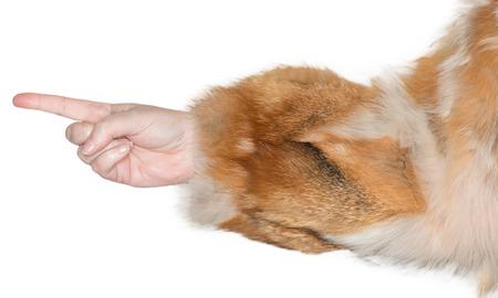 dedo                �ndice: Mujer apuntando con el dedo ?ice
