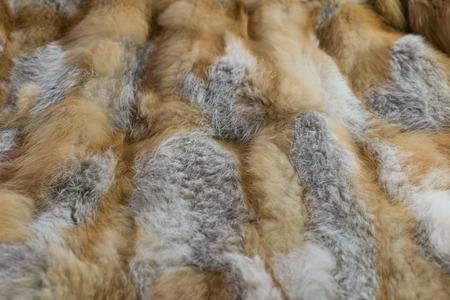 red fox: red fox fur