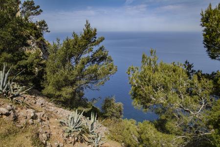 mallorca: Bay landscape in Mallorca