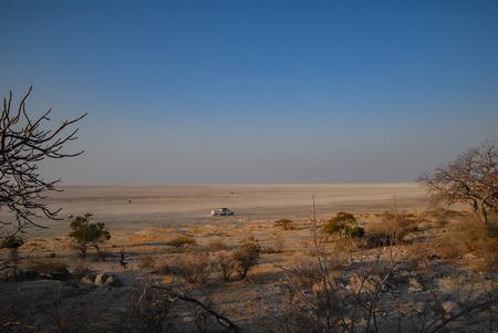 adansonia: Desert landscape in Africa